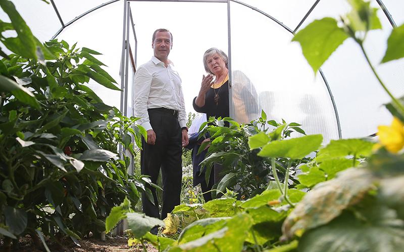 Ставропольские садоводы иогородники получат право вести хозяйство вне товариществ