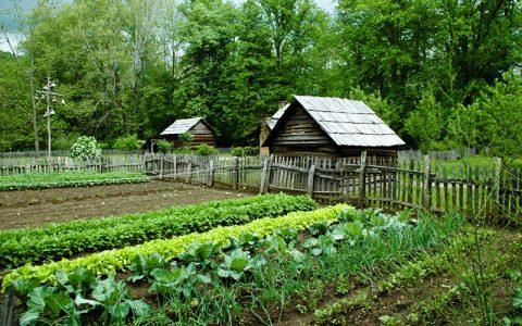 Понятие садовый дом в законе 2021 размеры